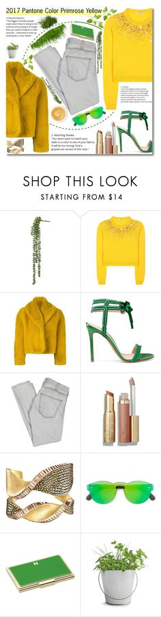 """""""Primrose Yellow"""" by rivlyb ❤ liked on Polyvore featuring Miu Miu, Jean-Paul Gaultier, Gianvito Rossi, Current/Elliott, RetroSuperFuture, Kate Spade, Potting Shed Creations and Pommade Divine"""