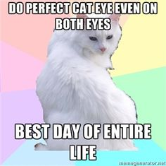 LOL, the beauty addict kitty meme is totally me!