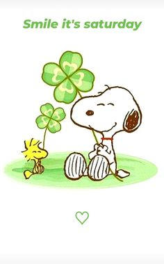 St Patricks Day Pictures, Peanuts Snoopy, Peanuts Comics, Winnie The Poo, Snoopy Images, Snoopy Wallpaper, Cute Paintings, Irish Eyes, Snoopy And Woodstock