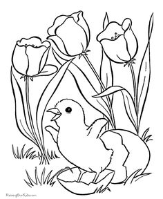 Spring Flowers Coloring Pages Kids