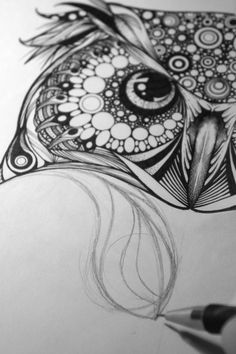 'Spotted Eagle Owl' - one of three illustration commissions for Hoot Watches.