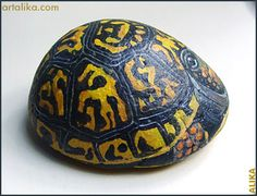 painted rocks: animals: box turtle