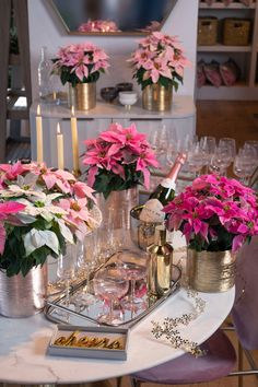 Celebrate the new year with Poinsettia plants! These long-lasting plants look fabulous long after the holiday season! Indoor Gardening, Container Gardening, Christmas 2015, Holiday, Poinsettia Plant, Cake Recipes, Decorating Ideas, Seasons, Table Decorations