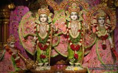 To view Sita Rama Laxman Hanuman Wallpaper of ISKCON Dellhi in difference sizes visit - http://harekrishnawallpapers.com/sri-sri-sita-rama-laxman-hanuman-iskcon-delhi-wallpaper-007/