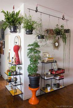 plantas no apartamento