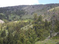 One Mine Ridge