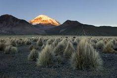 Sajamský park se nachází na rozsáhlé náhorní plošině v nadmořské výšce kolem 4 000 m n.m. Altiplano (šp. náhorní rovina) odděluje západní a východní Andy.