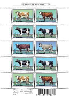 6 originele, zeldzame Nederlandse Rundveerassen op Postzegel. Lees meer op Postzegelblog NL