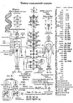 Secrets Of Slavic Alphabet Bukwica Tajniki Słowiańskiego Pisma Rune Symbols, Alchemy Symbols, Ancient Symbols, Scandinavian Tattoo, Sacred Geometry Symbols, Knowledge And Wisdom, Calligraphy Letters, Book Of Shadows, Reiki