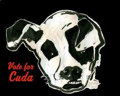 Cuda the Deformed Pit Bull