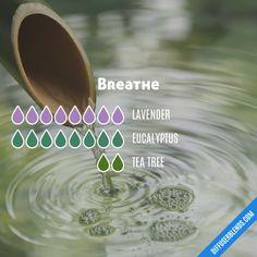 Breathe - Essential Oil Diffuser Blend
