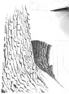 zeichnung Drawing Trees (stumps and trunks), pen and ink art instruction Ballpoint Pen Drawing, Ink Pen Drawings, Realistic Drawings, Easy Drawings, Drawing Trees, Painting & Drawing, Tree Trunk Drawing, Art Anime, Black And White Drawing