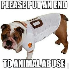 antonio brown dog jersey