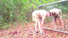They built a mirror in the jungle to see how animals would react : videos