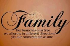 163 Best Family Images Thoughts Frases Grandchildren