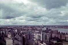 """Viipuria katsottuna """"pilvenpiirtäjän"""" katolta. Viipuri"""
