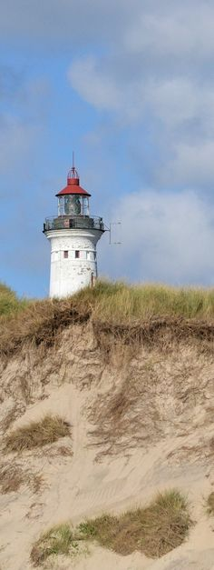 Leuchtturm Lyngvig Fyr in Dänemark, Nordsee, Hvide Sande, Ringkøbing Fjord