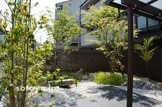 植物 Japanese Garden Style, Garden Styles, Plants, Plant, Planets