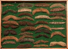 amazing mustache case from the wig expert, photo by Mark Leibowitz.  creepy, yet awesome at the same time.