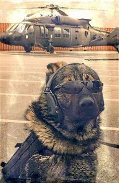 #MilitaryHD