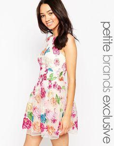 Chi Chi London Petite Floral High Neck Skater Dress