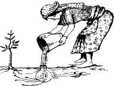 Irrigação tradicional e sustentável com potes de barro