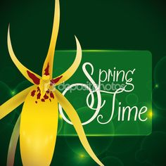 Delicate Yellow Orchid in a Green Background with Glows for Springtime, Vector Illustration Yellow Orchid, Green Backgrounds, Spring Time, Orchids, Glow, Delicate, Stock Photos, Christmas Ornaments, Holiday Decor