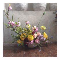 Sunday vibes. #graceandthorn #flowers #plants