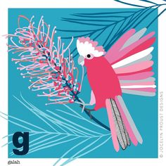 Day I think 🤔 of G for Galah Abstract Flowers, Abstract Art, Flower Painting Canvas, Canvas Paintings, Rock Painting, Galah Cockatoo, Australian Native Flowers, Australian Wildflowers, Paint Bar