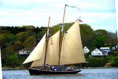 portland maine tall ships   Tall ships are coming to Portland - The Portland Press Herald / Maine ...