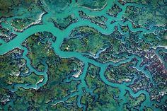 Nature Abstract Patterns by Thorsten Scheuermann – Fubiz™