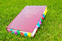 Child training Bible.  Different tab colors correspond to different topics and highlighted verses.  easy to find verses on anger, for example.