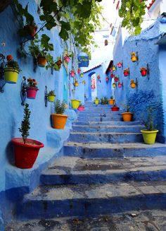 Sahara Desert Trips & Morocco Travels, Fes Picture: Chefchaouen, Have been to Morocco's Blue Pearl, Blue city,Chaouen - Check out Tripadvisor members' 211 candid photos and videos of Sahara Desert Trips & Morocco Travels