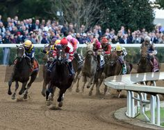 Songbird, Mike Smith aboard, wins the 2015 14 Hands Winery Breeders' Cup Juvenile Fillies.  Courtney V. Bearse Photo