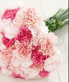 Carnation Bouquet, just needs babies breath.. love the pinks!
