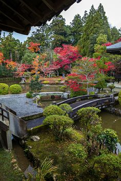 Visit the shrines and zen gardens of Kyoto, Japan.