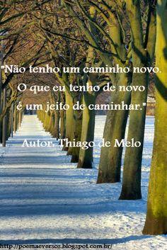 Poemas e Versos : Poesia  Visual Thiago de  Melo