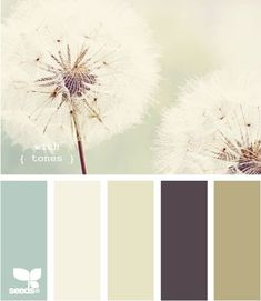 Master bedroom paint colors: Pale green walls, cream woodwork, taupe headboard, deep purple curtains.