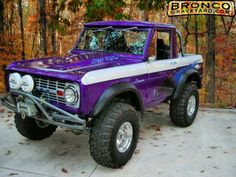 Purple bronco built by Stacy david
