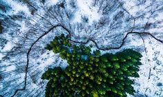 The best drone photography of 2016 – in pictures | Art and design | The Guardian