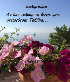 Good Night Quotes, Greek Quotes, Feelings, Words, Nature, Plants, Easter, Naturaleza, Easter Activities