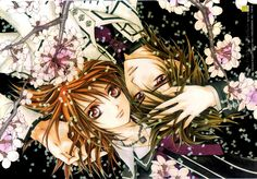 vampire knight guilty wallpaper - Google Search