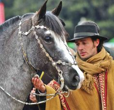 cabezada plata y oro Horse Bridle, Horse Gear, Gaucho, Horse Adventure, Horse Costumes, Horse Bits, Headstall, Poster Pictures, Pony