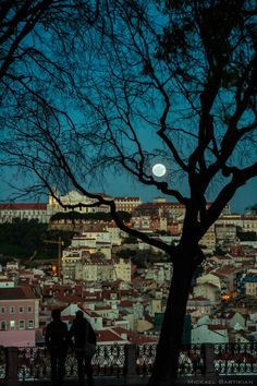 São Pedro de Alcântara, Lisbon, Portugal. O mirante mais bonito em Lisboa A travel board about things to do in Lisbon Portugal, including Lisbon restaurants, food, nightlife, cafes, shopping and much more about the capital of Portugal!