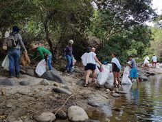 La Fundación Ambiental y Cultural FAMBARU, a través de su programa de voluntarios Ambientales: Protectores del Agua, puso en marcha con el cuerpo de bomberos del Municipio de Alvarado Tolima, esta campaña para promover la limpieza de residuos y desechos tóxicos para nuestro medio ambiente que se han acumulado en las riberas del Río y a su vez llevar un mensaje a la sociedad sobre la necesidad de ser responsables con todos nuestros desechos y respetuosos con el entorno natural que nos rodea. Natural, Packing Light, Water Quality, Fire Dept, Volunteers, Cleaning, Nature, Au Natural
