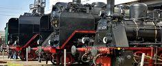 Diverse Dampflokbaureihen im Eisenbahnmuseum Dresden. Holland, Steamer, Paths, Iron, Belgium, France, Railway Museum, Dutch Netherlands, Netherlands