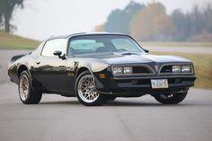 Cool Car Pictures, Car Pics, Bandit Trans Am, Black Trans, Pontiac Firebird Trans Am, Life Car, Hot Cars, Cars Motorcycles, Muscle Cars