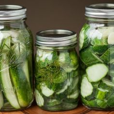 MY FAVORITE Easy Refrigerator Dill Pickles take only a few minutes to make. Once you make your own homemade dill pickles, you'll never buy store bought again. Homemade Refrigerator Pickles, Homemade Pickles, Pickles Recipe, Canning Pickles, Minis, Pickle Vodka, How To Make Pickles, Salmon Patties, Pasta