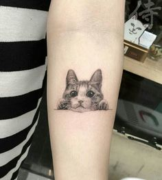 Cheeky cat tattoo