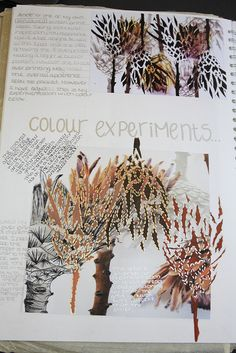 archive of journal experiments and artworks Art- Personal Investigation, Unit 3 (Natural Forms)) Art Lessons, Art Journal Inspiration, Natural Form Art, Nature Art, Illustration Art, Art, Sketchbook Journaling, Art Journal, Book Art